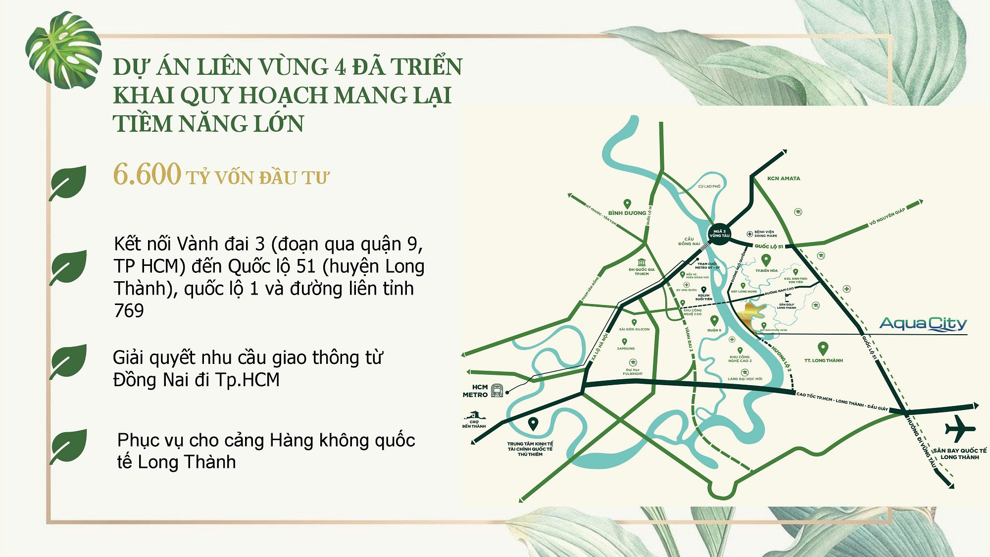 Tien Do Ha Tang